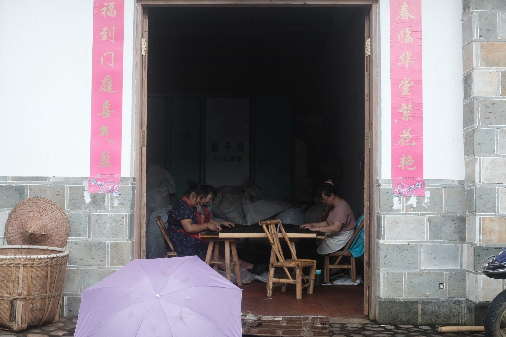 wuyishan tefabrik – tebutik floder och berg