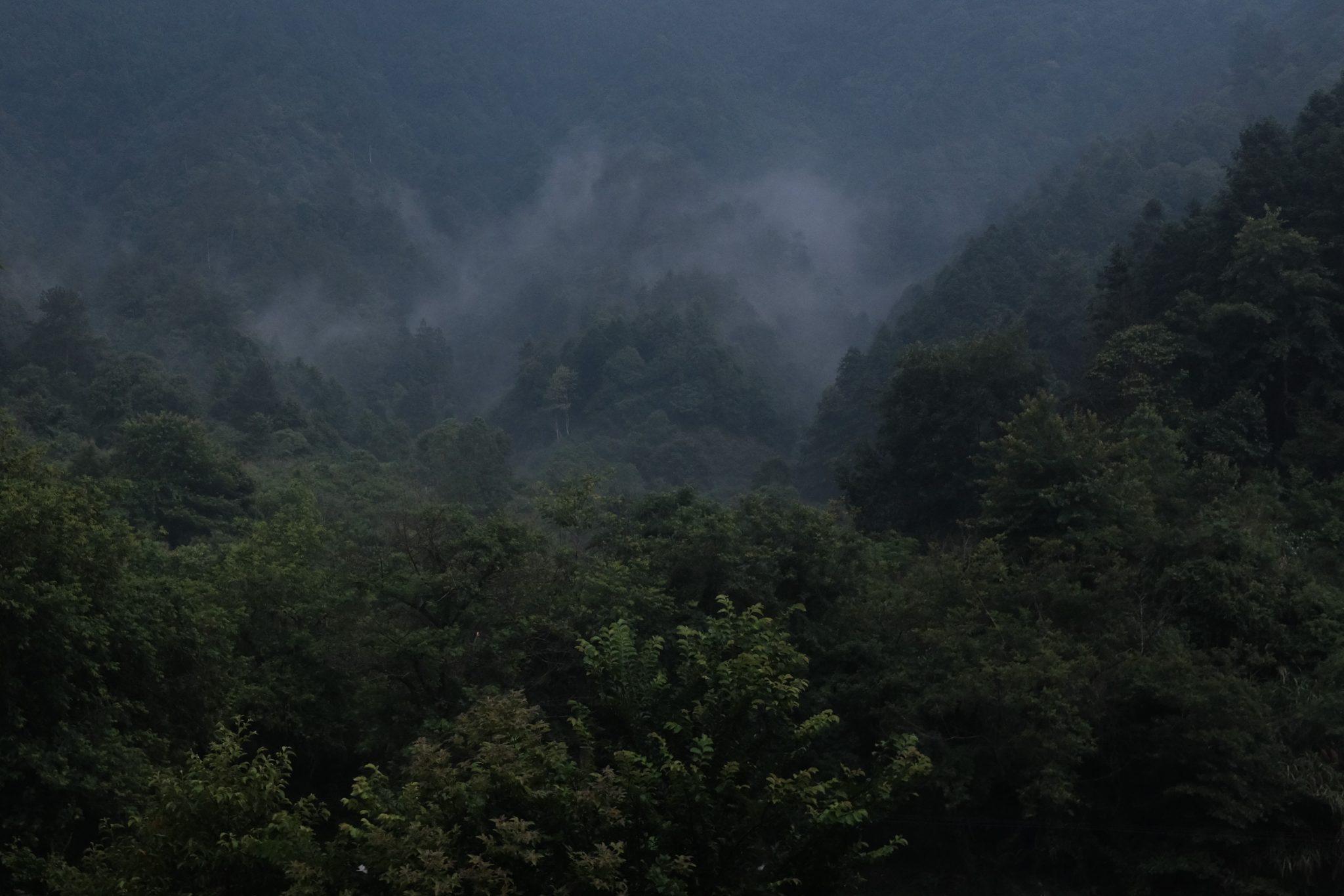 dimma fuliang – floder och berg tebutik